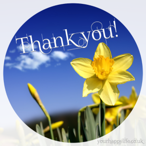 Thank You with a pretty daffodil